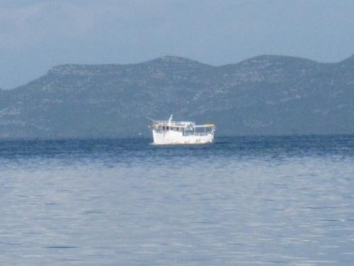 Wir steuern eine Insel an, die unter Naturschutz steht. Es sind noch andere Schiffe unterwegs.